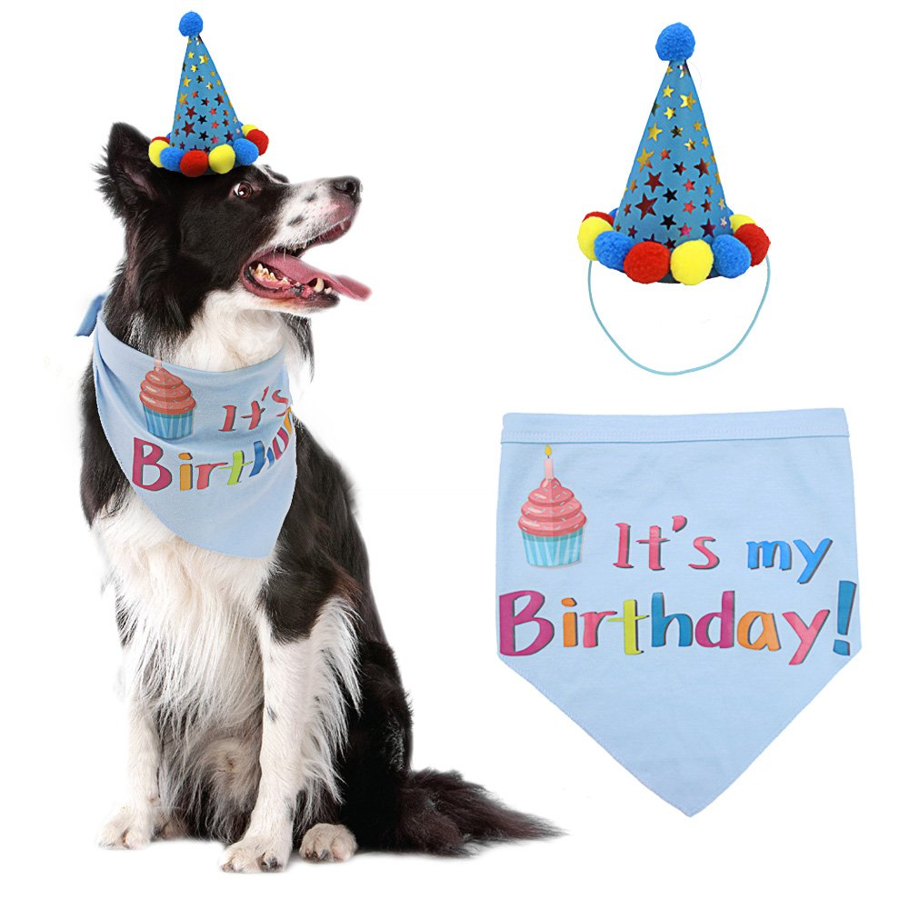 dog birthday hat dog birthday bandana