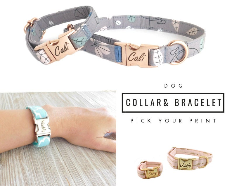 dog collar friendship bracelets