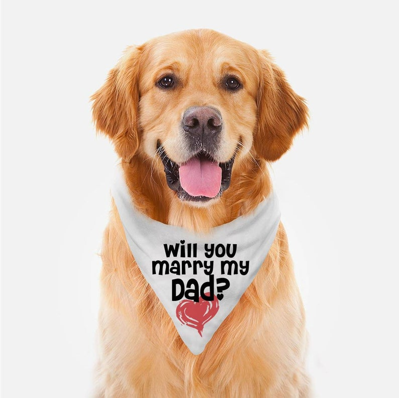 dog proposal prop bandana