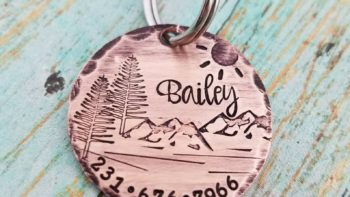 personalized dog tag pet gift ideas