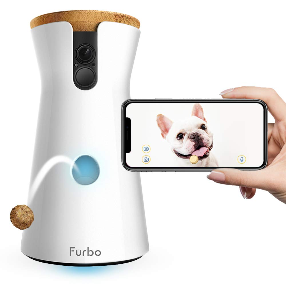 treat tossing dog camera furbo