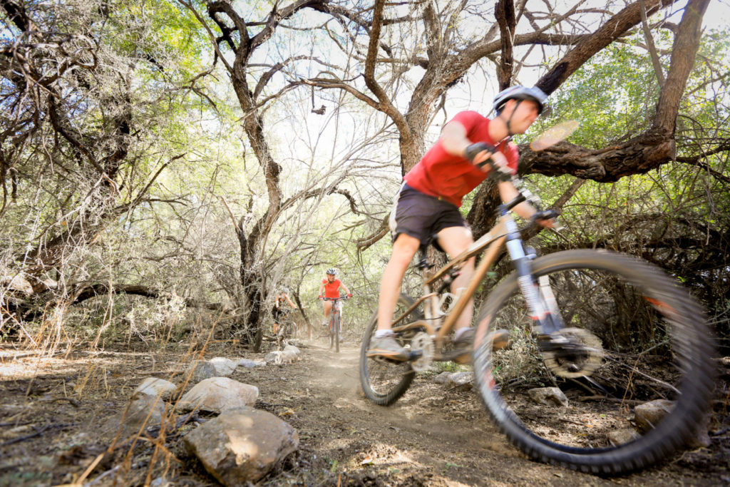 Mountain biking at Tanque Verde Dude Ranch
