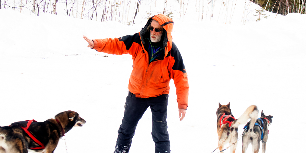 photo, three dogs and their owner before dogsledding