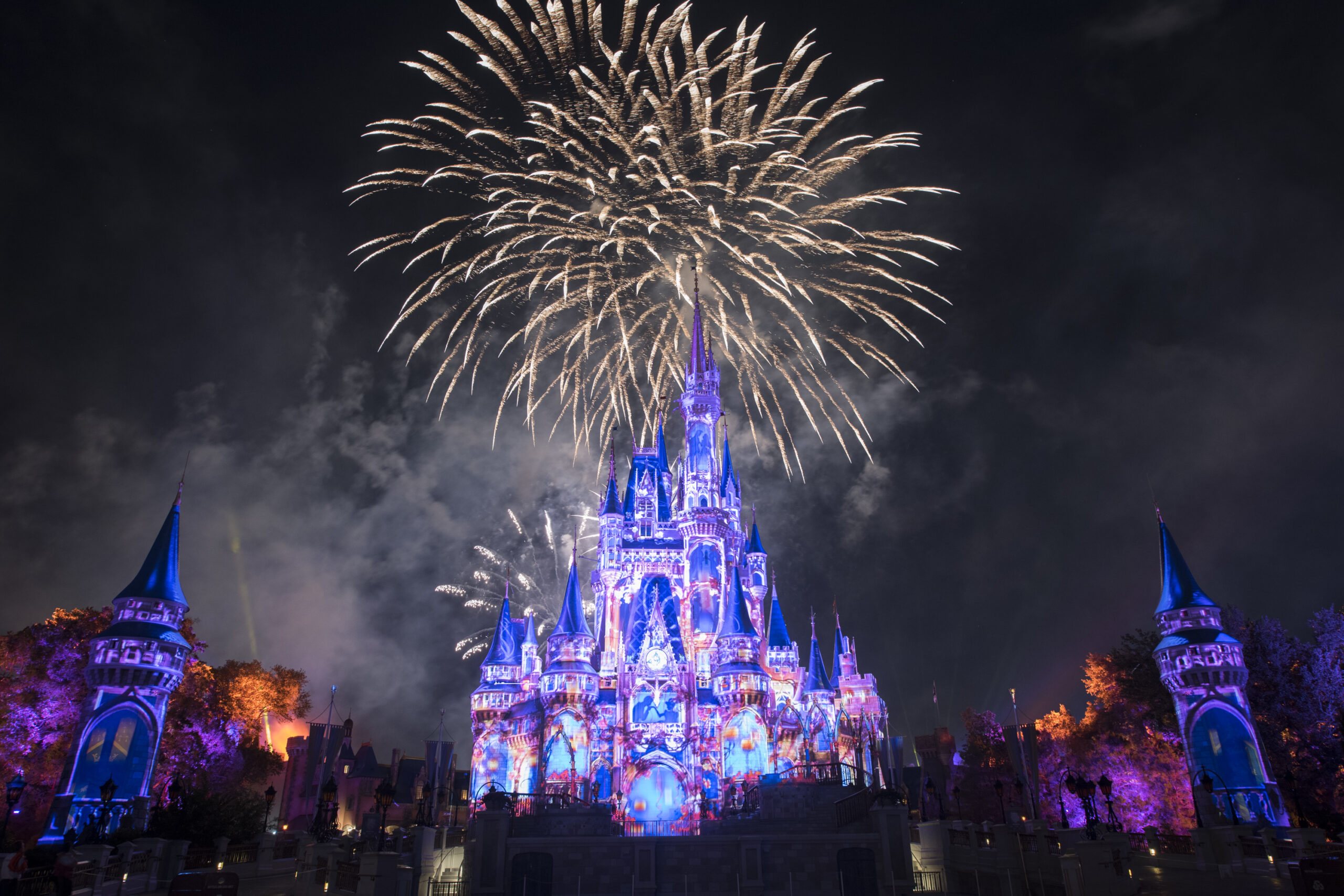 Fireworks in Disney's Magic Kingdom