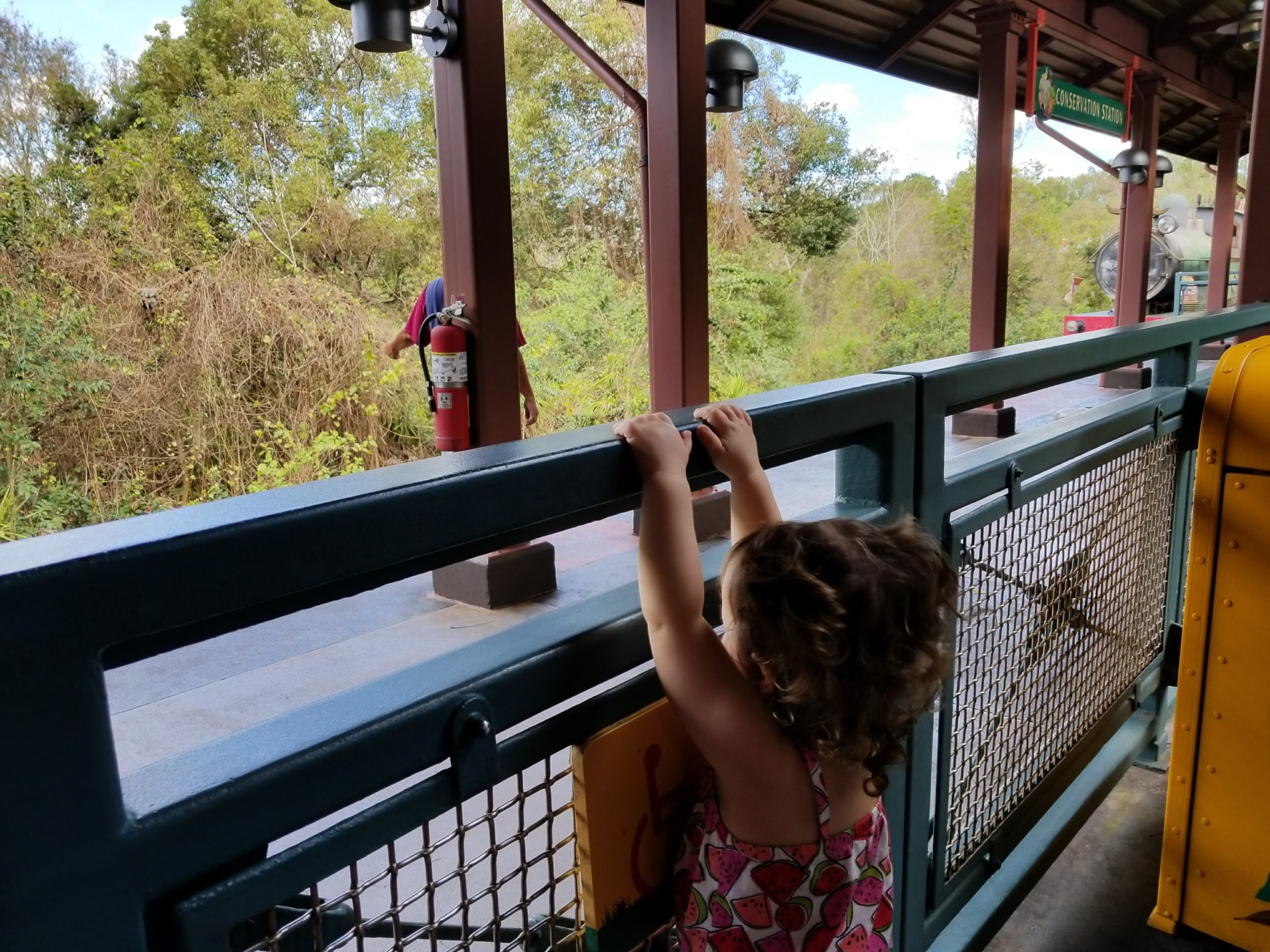 Waiting for the Wildlife Express Train, a 1.2 miles trek taking guests from Harambe Station in the Africa section to Conservation Station in the Rafiki's Planet Watch section.