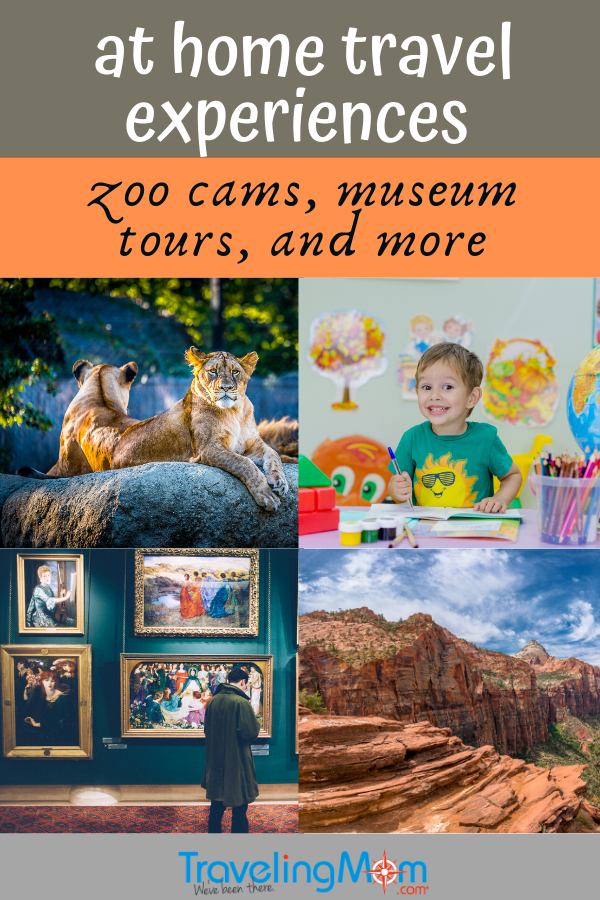 lions at zoo, little boy in classroom, man in art museum, Zion national park
