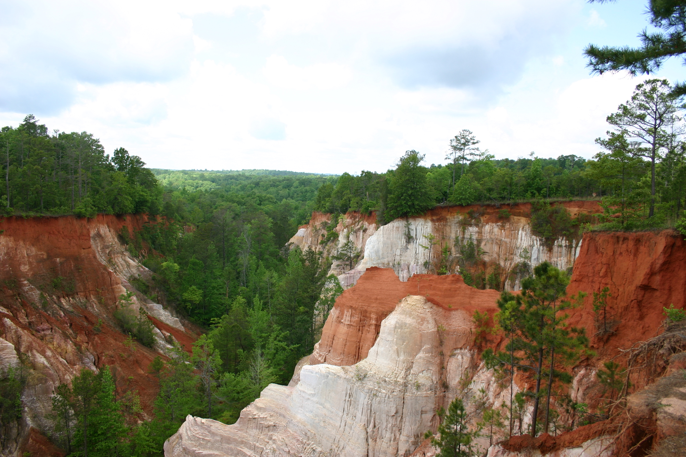Georgia road trips lead to deep chasms and colorful cliffs at Providence Canyon.