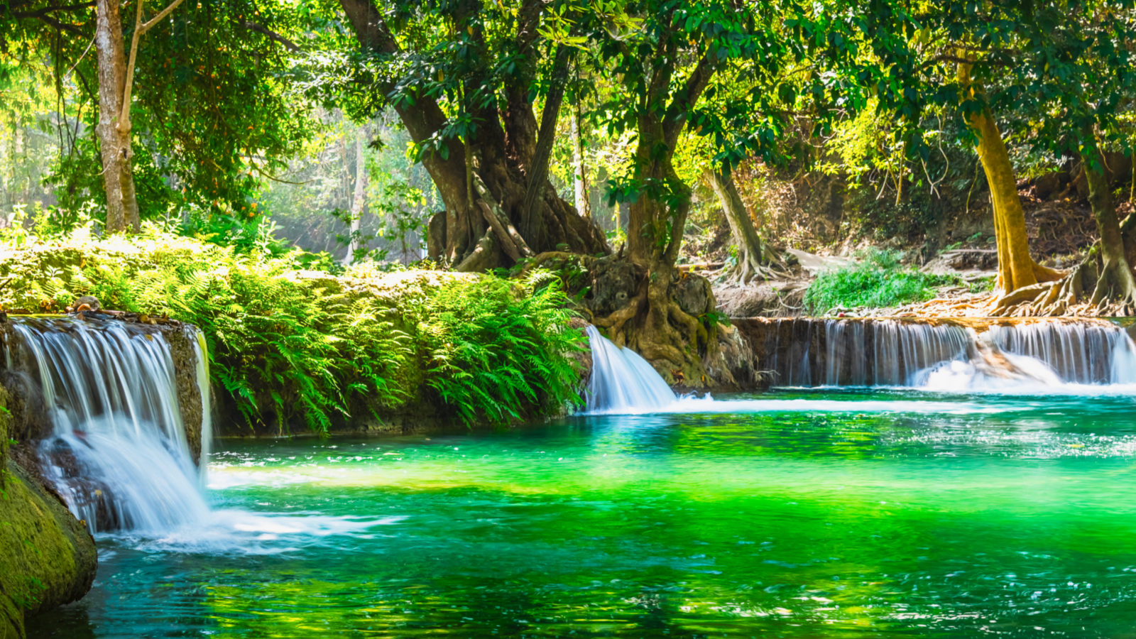 waterfall into an idyllic lake in the forest