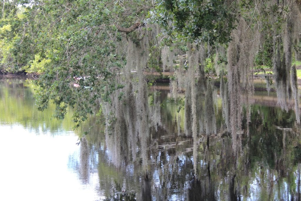 Road trips from Atlanta to Martin County, Florida, gives byways and meandering roads for seclusion.