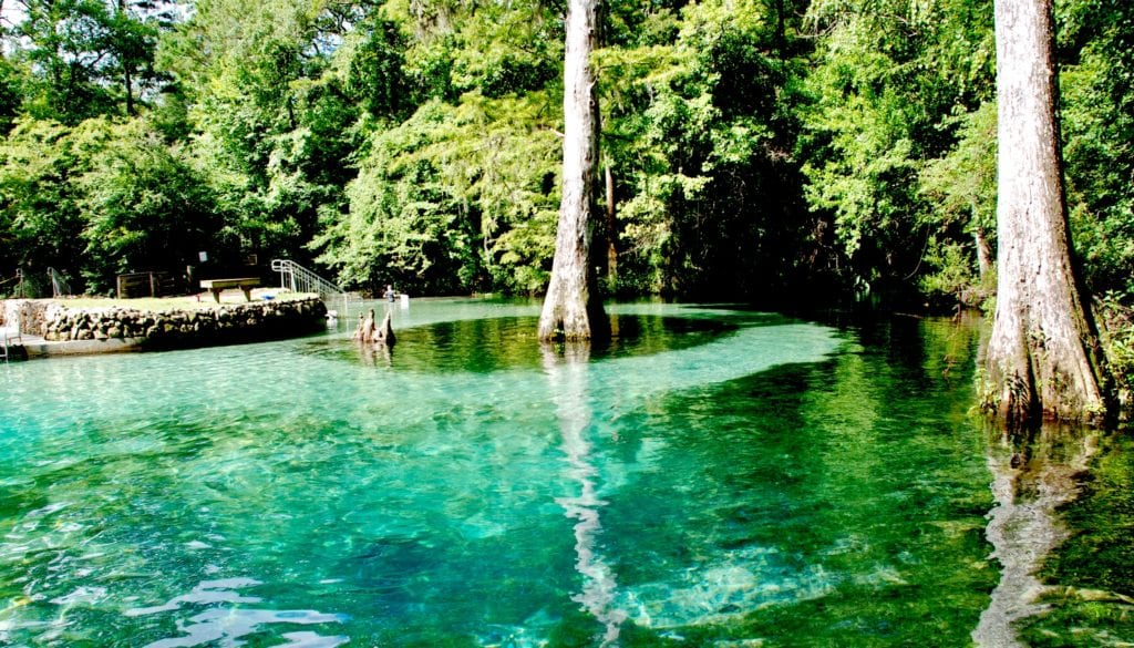 Easy road trips from Atlanta into NW Florida means a network of rivers, streams and creeks.