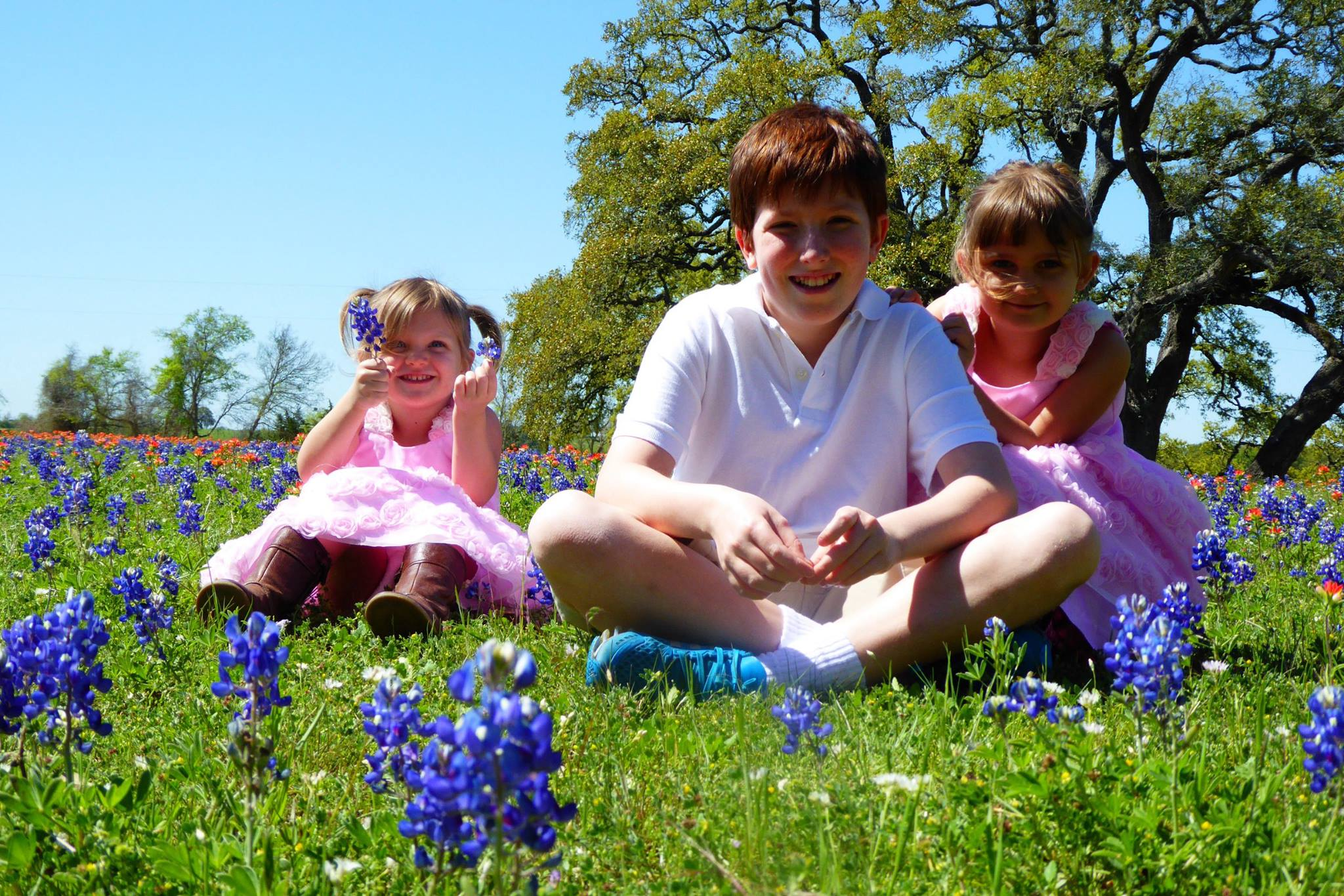 two blonde girls in pink dresses and a redheaded tween boy sit in a field of bluebonnets