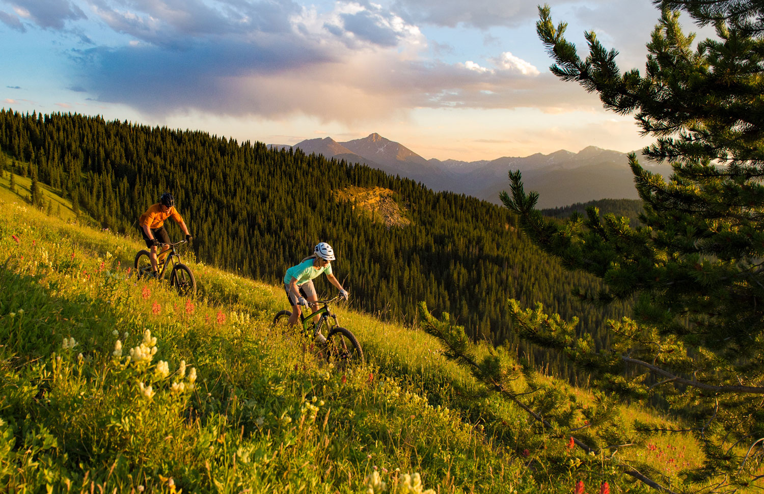 biking Vail mountain in the summer