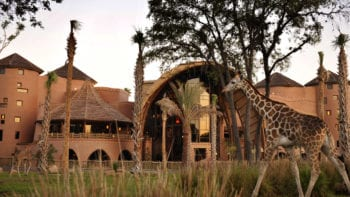 Disney Vacation Club resort at Kidani Villagecategory
