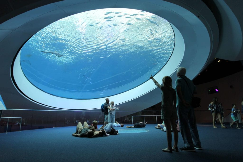 The Frost Science Aquarium in downtown Miami