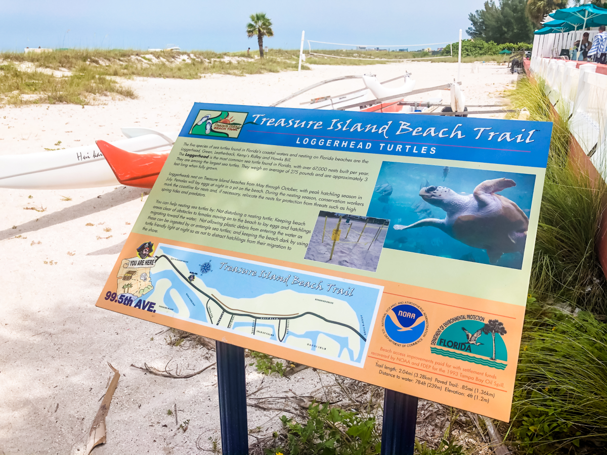 Best Florida Beaches for Families - Treasurer Island Beach