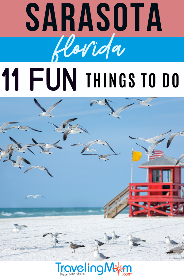 seagulls flying over beach and red lifeguard stand