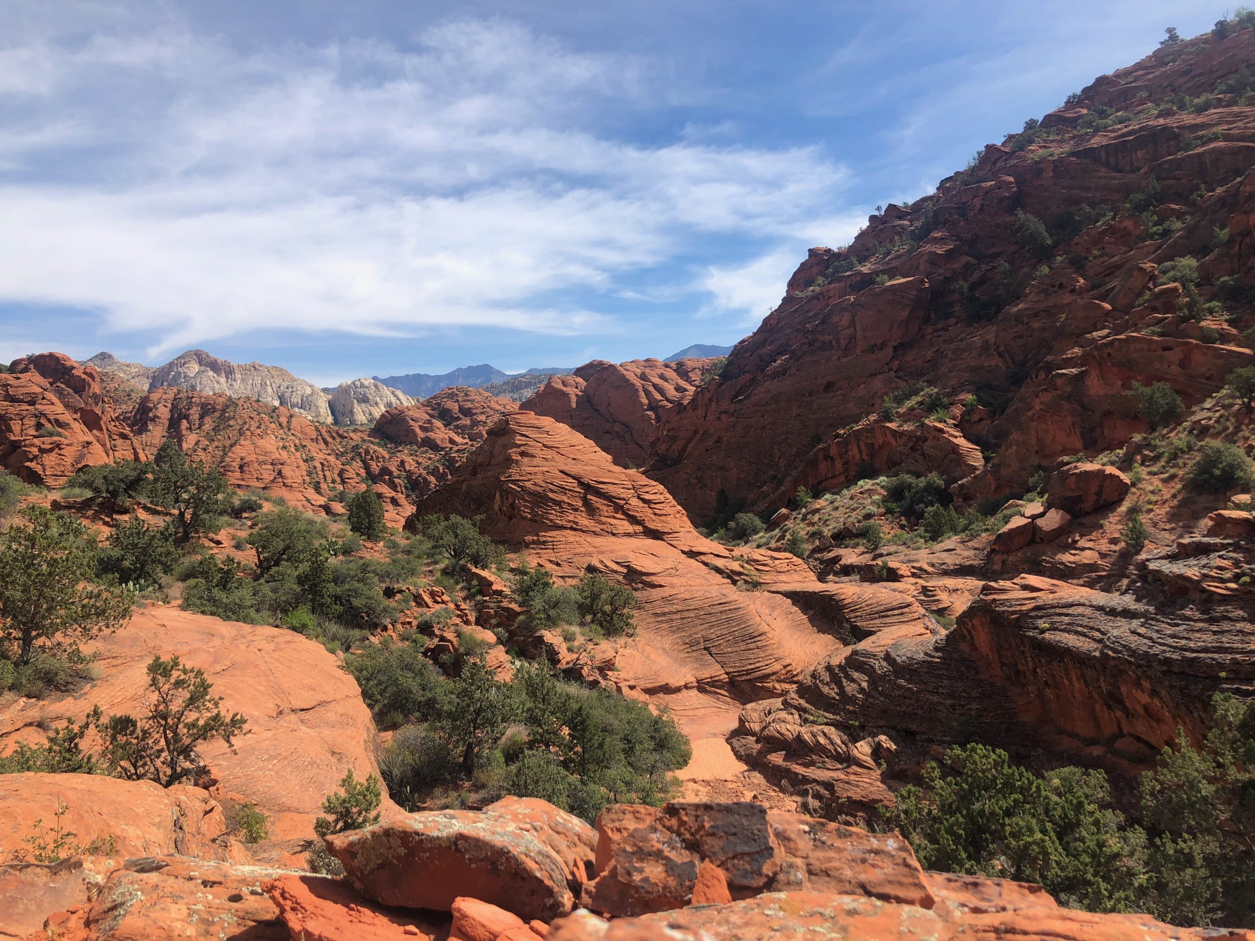 hikes in zion national park, Snow Canyon view