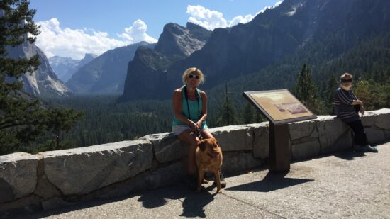 yosemite with dogs