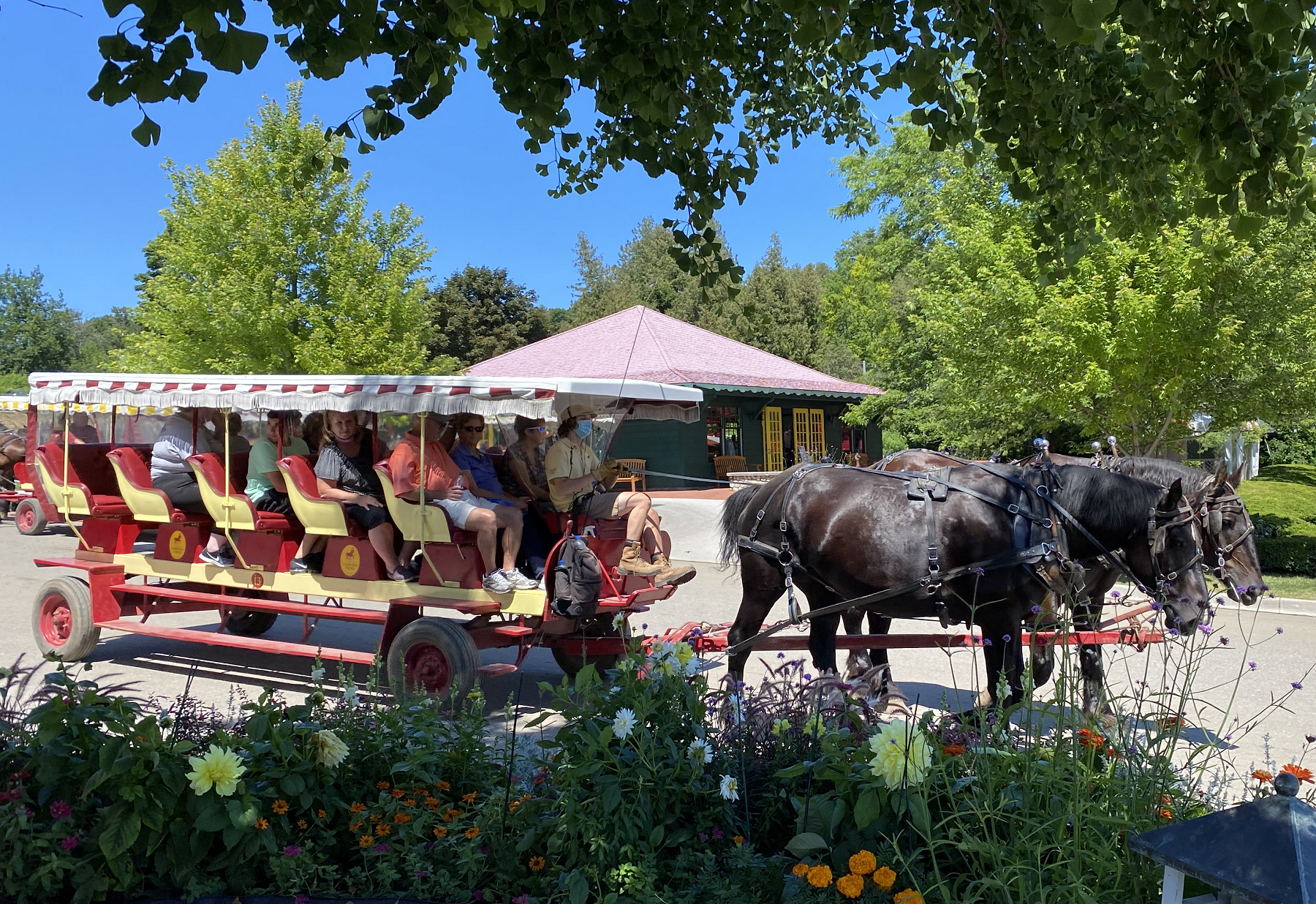 Horse-drawn carriage rides are one of many fun things to do on Mackinac Island.
