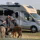 man with RV and alpacas at a Harvest Host location.