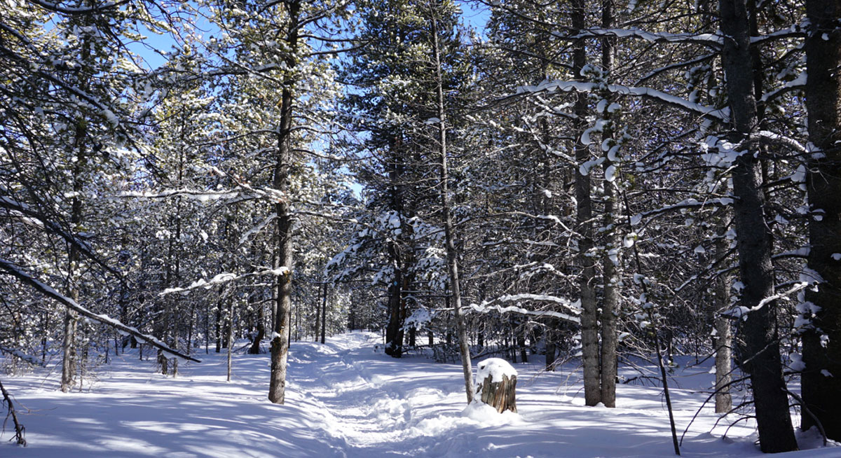 Winter hiking tips for deep snow