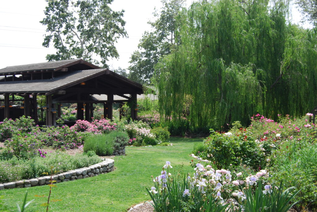 Decanso Gardens, a fun place to visit with babies in LA