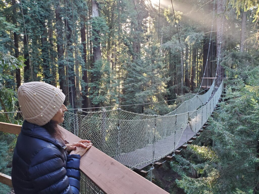 Redwood Sky Walk on a California vacation for families.