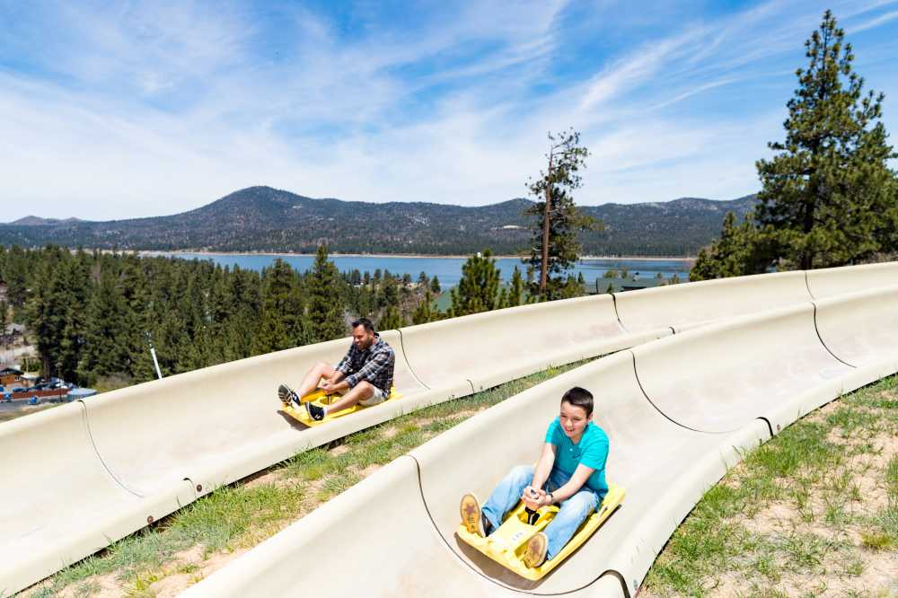 Dad and son on the alpine slide, one of the best things to do in Big Bear in the summer.