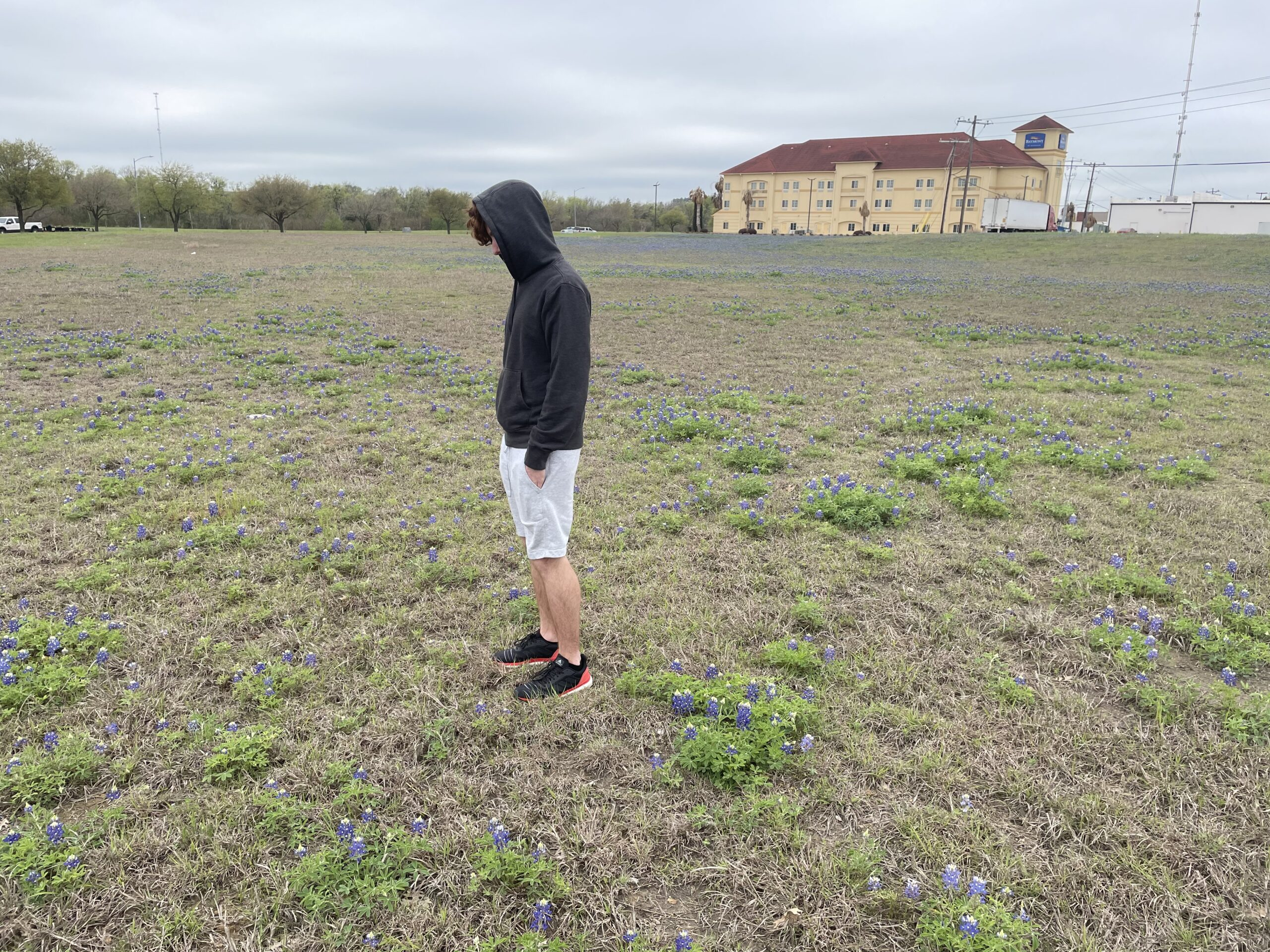teenager in hooded sweatshirt and shorts standing in field of bluebonnets brenham