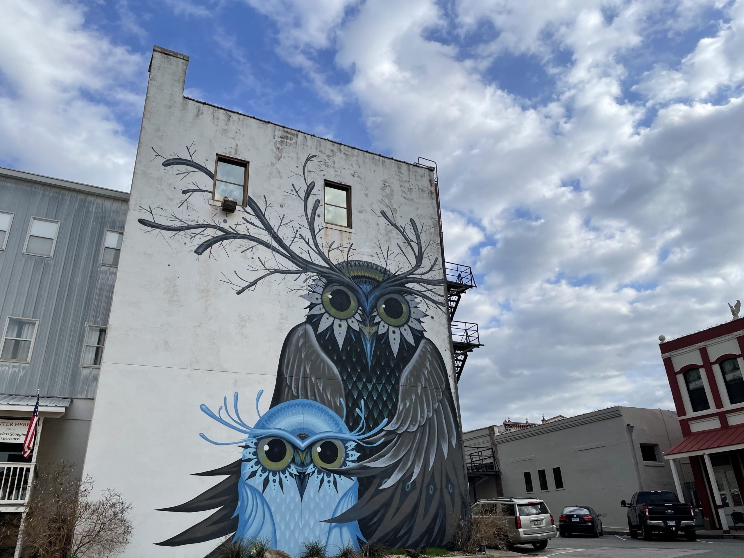 large mural on the side of a building against a blue sky with clouds. Mural is of two owls with antlers