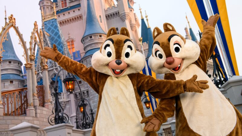 Chip and Dale at Cinderella Castle