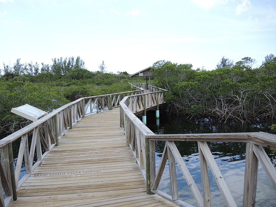 The boardwalk at Lucayan National Park in The Bahamas.