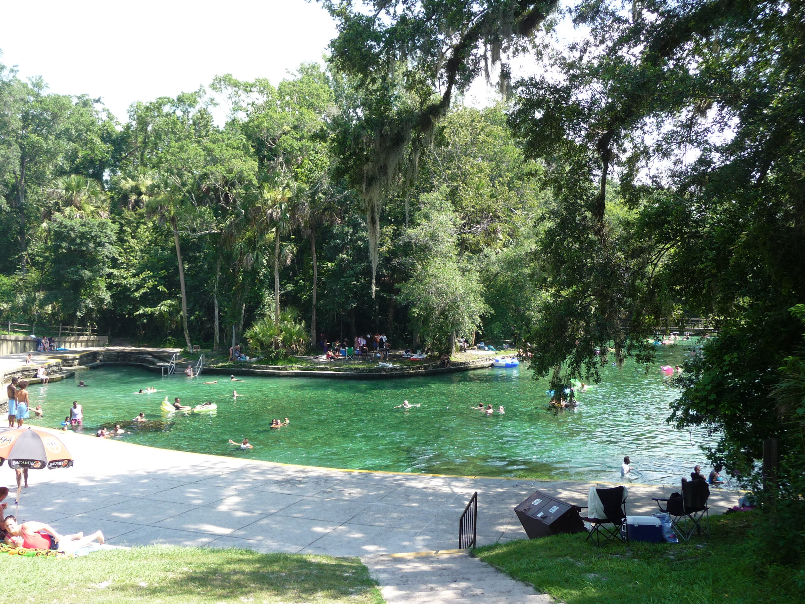 emerald green pool at Wekiwa Springs State Park, a fun place to visit in Orlando