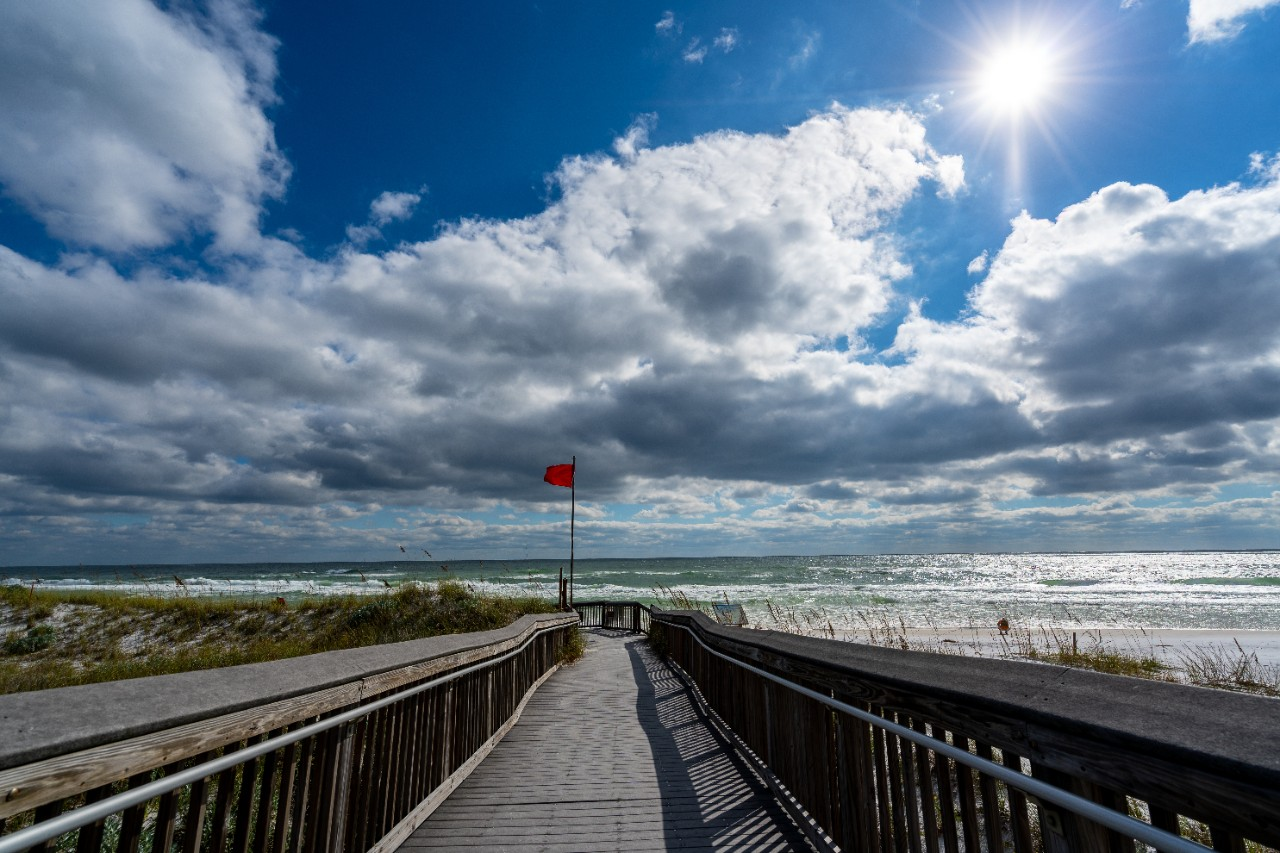 Grayton Beach State Park is one of the best Florida panhandle beaches.