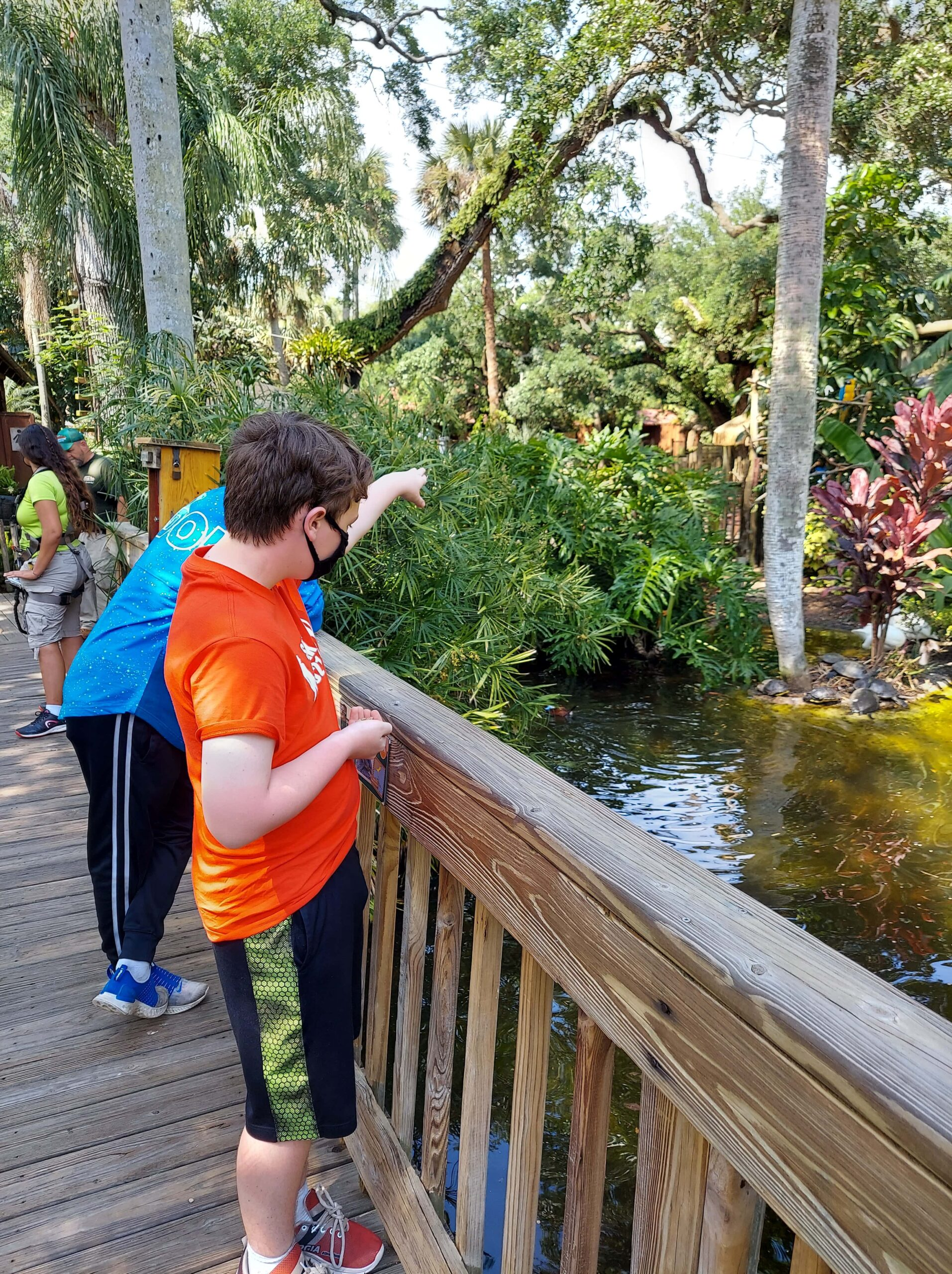 Kids can feed the gators at the St. Augustine Alligator Farm, one of the best things to do in St. Augustine