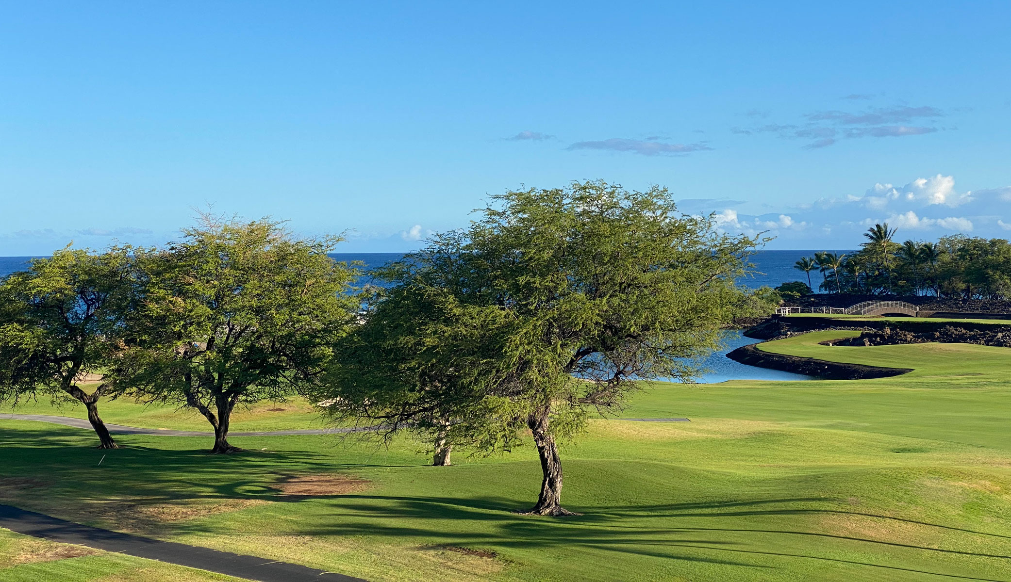 Fairmont Orchid review: views from the lanai of the ocean view rooms