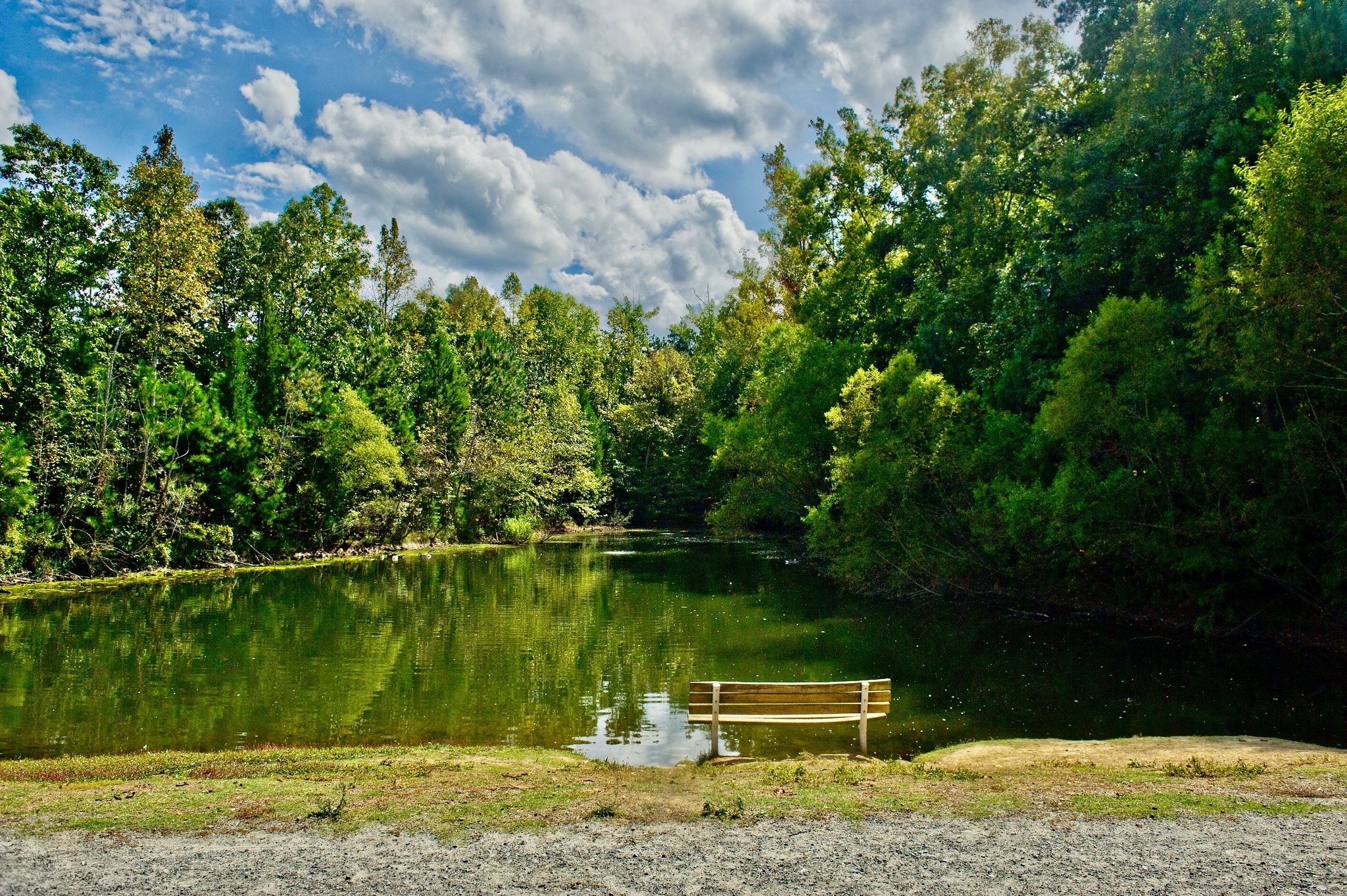 Free in Alpharetta could be sitting by a pond in an arboretum.