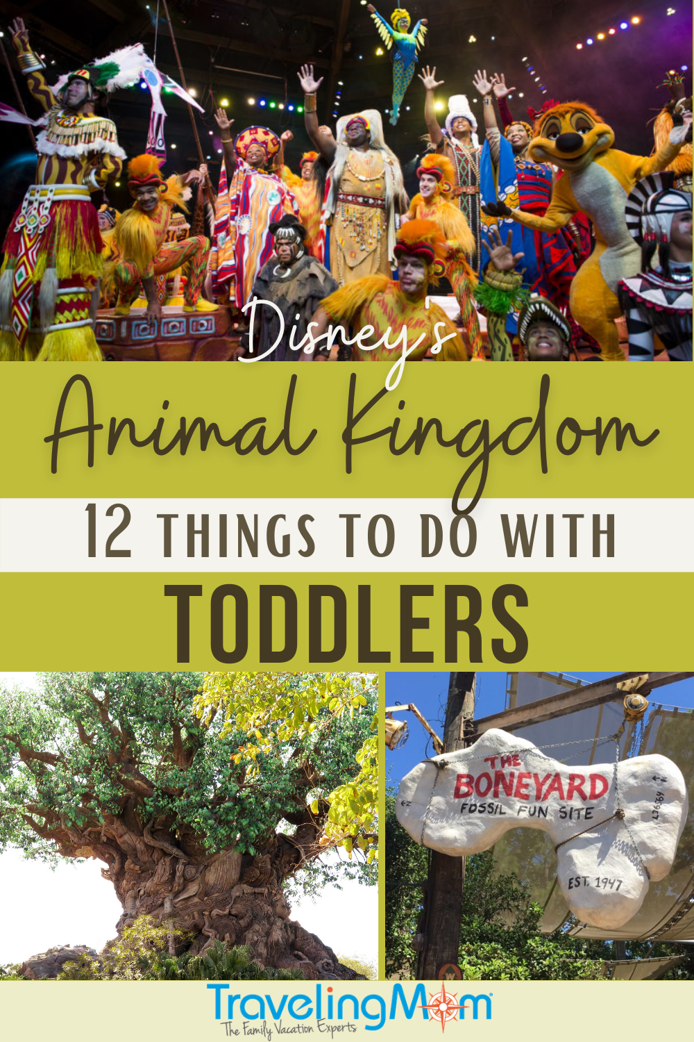 text on pin reads disney's animal kingdom 12 things to do with toddlers image of tree of life, boneyard playground and performers