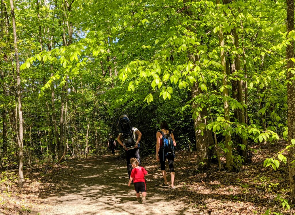 A family hiking, one of the best things to do in New River Gorge National Park