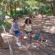 black mother and her two daughters pose smiling at the camera at the spider climb bok tower