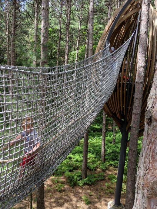 small child in a net canopy suspended from a tree at Dow Gardens, one of the top vacation spots in Michigan