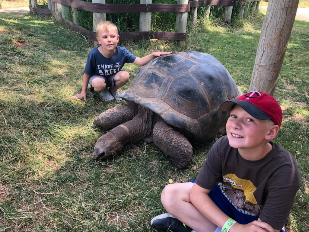 Giant tortoises with two young boys at Reptile Gardens, one of the fun things to do in Rapid City SD