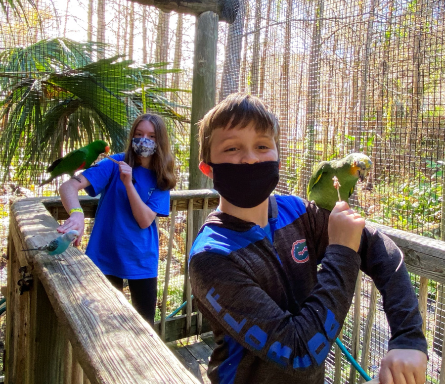 Parrot Time at Wild Florida theme park in Central Florida
