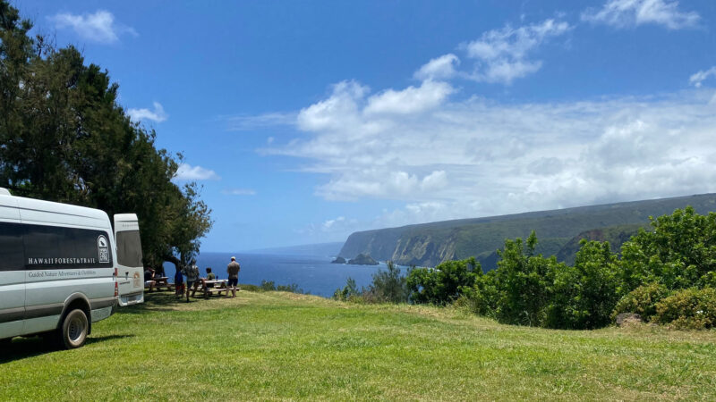 hiking with kids in Hawaii with a guide and beautiful views