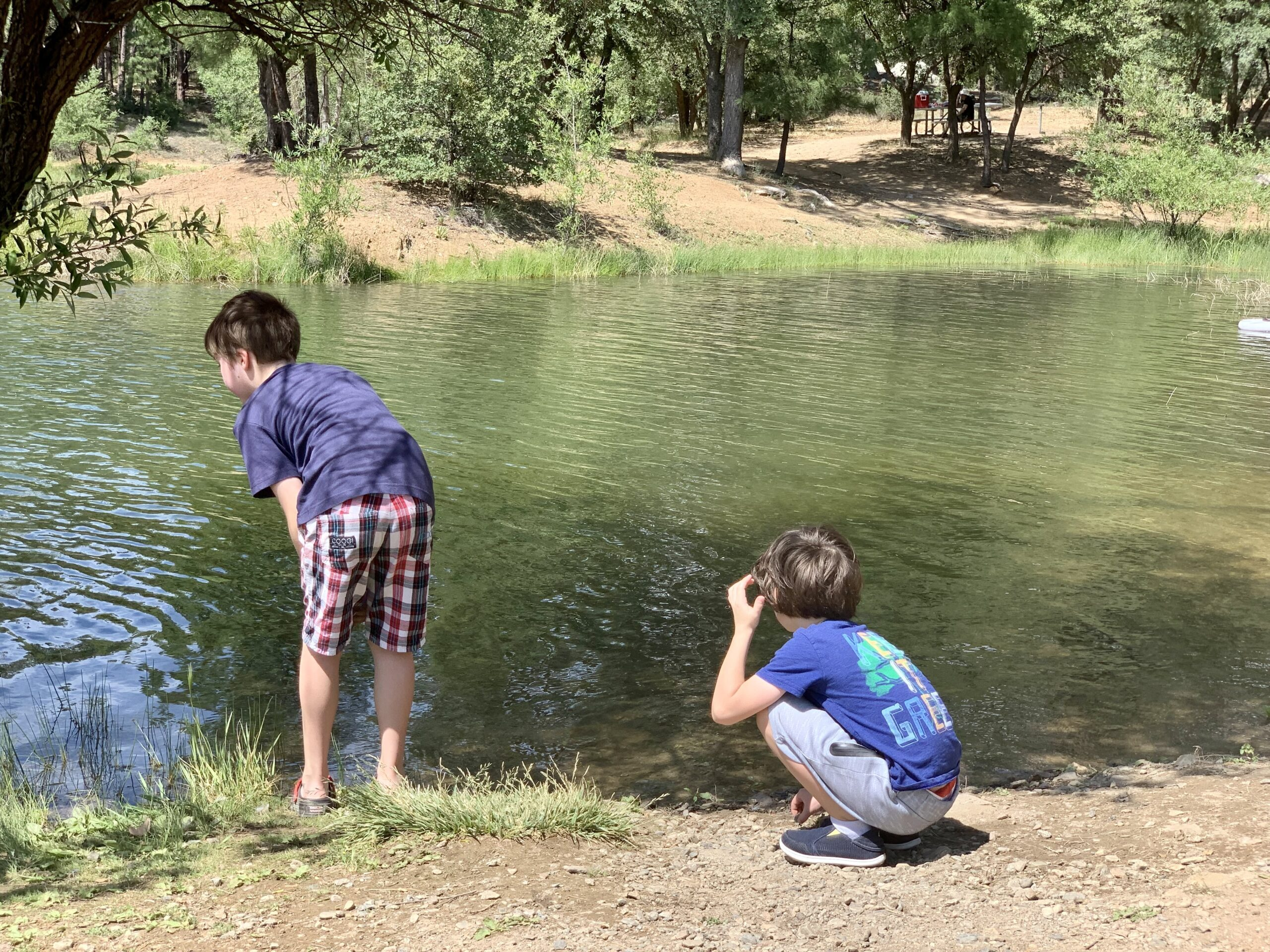 Things to do in Prescott AZ - Two boys looking for fish at Watson Lake