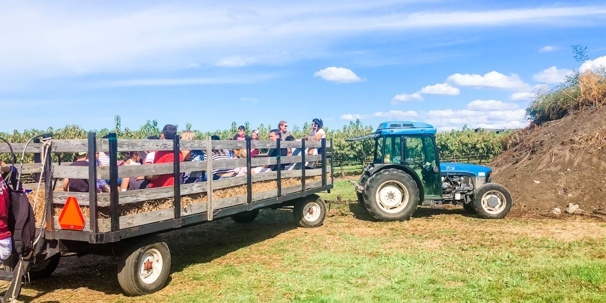 People in a hay ride cart at an orchard