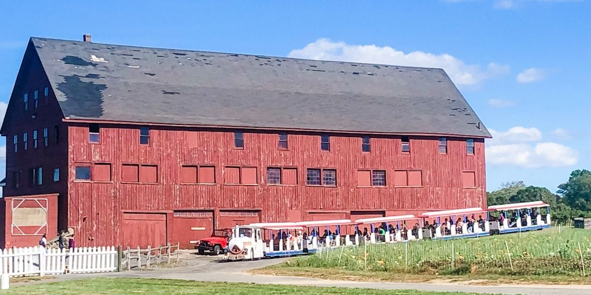 Red barn with a line of golf carts