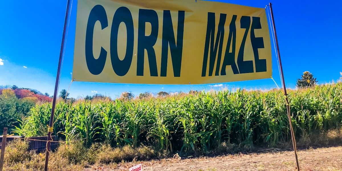 Sign advertising a corn maze in an apple picking orchard