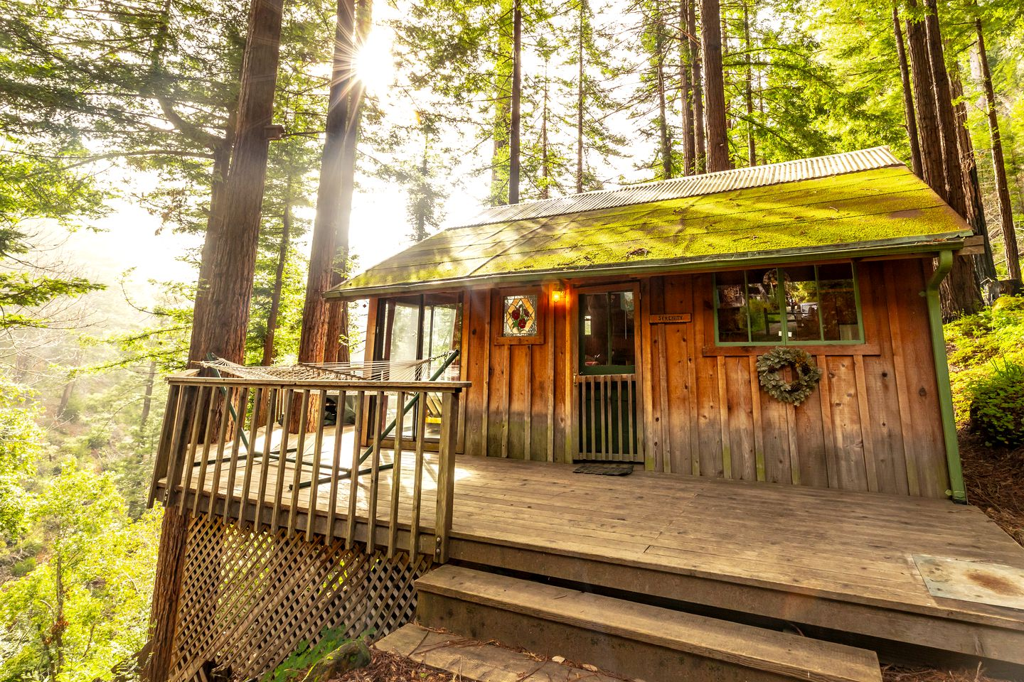 Glamping treehouse in California