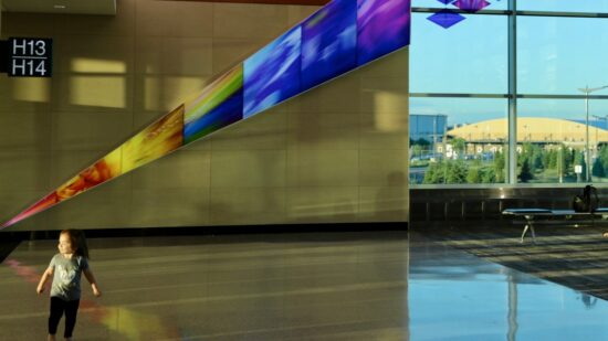 Airport Art Galleries - Leap of Joy by Philip Noyed